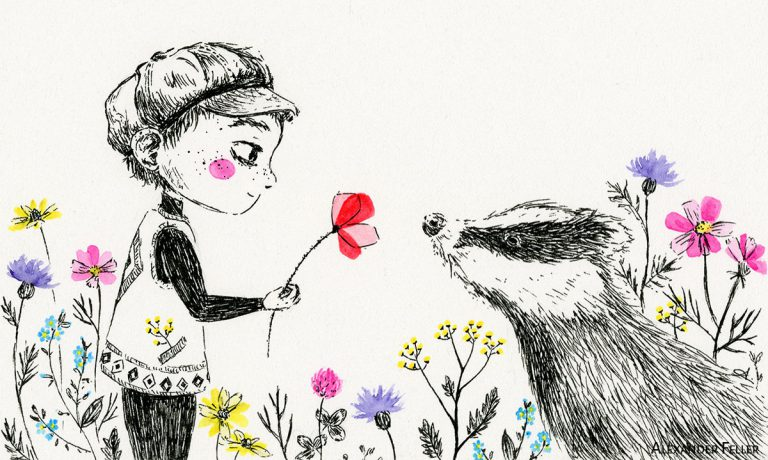 Blaireau et Fleurs Sauvages